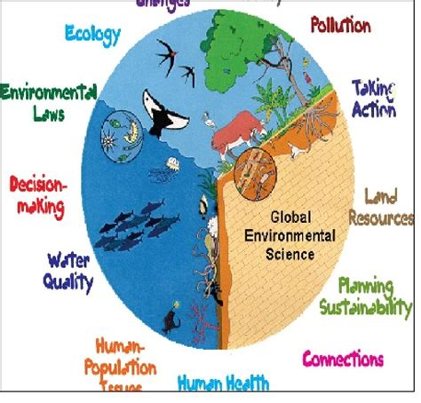PhD research proposal environmental science project