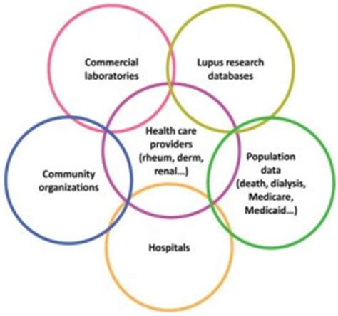 Research proposal on systemic lupus erythematosus